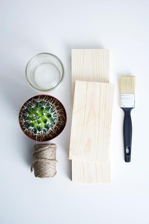 cactusplanter01